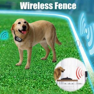 Wireless Dog Fence Collar